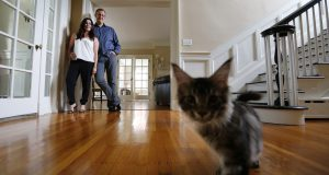Home of the Month: A renovated gem in Buffalo's Central Park neighborhood