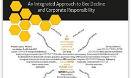 What's the buzz about business and bees?