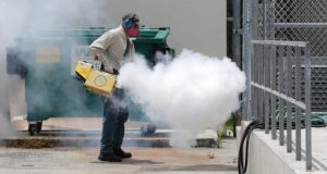 Florida Zika virus has health, travel experts urging caution