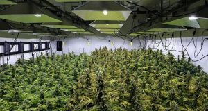 How pot is firing up this real estate